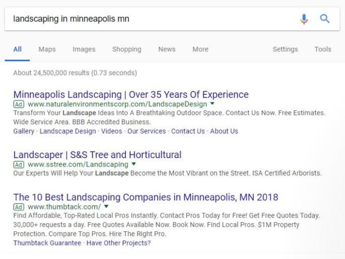 Google Ads Medspa Leads Example